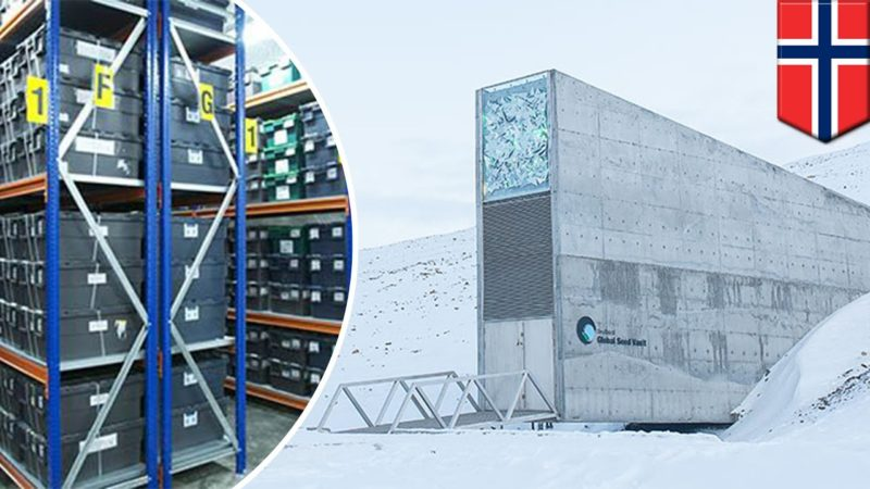 "LA BANCA DEI  SEMI… The""SVALBARD GLOBAL seed VAULT""…"